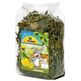 Pissenlit JR Farm JR FARM 4024344071010 Friandise & Complément