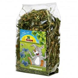 Plantain lancéolé JR Farm JR FARM 4024344071034 Friandise & Complément