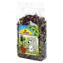 Rêve de chinchilla JR Farm JR FARM 4024344007910 Friandises