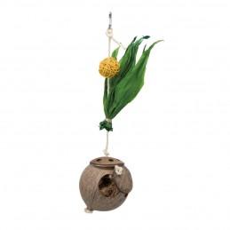 Jouet noix de coco sur corde Trixie TRIXIE 4011905589206 Jouets