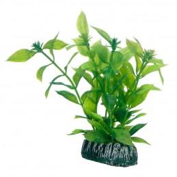 Hobby Hygrophila HOBBY 4011444515605 Plantes