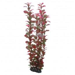 Hobby Ludwigia HOBBY  Plantes
