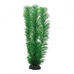 Hobby Egeria HOBBY  Plantes
