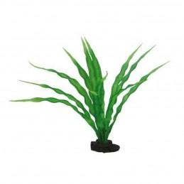Hobby Crinum HOBBY 4011444415066 Plantes