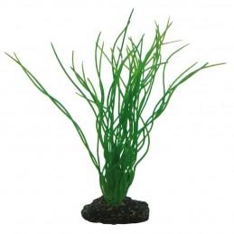 Hobby Sagittaria HOBBY 4011444415028 Plantes