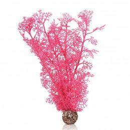 Oase Biorb Corail rose