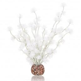 Oase Biorb boule de bonsai