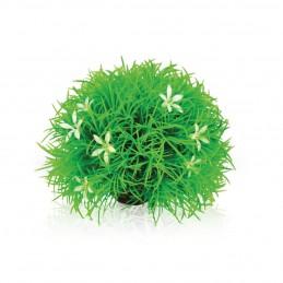 Oase Biorb plante boule