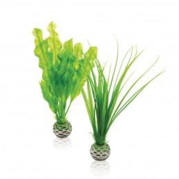 Oase Biorb Set plantes vertes