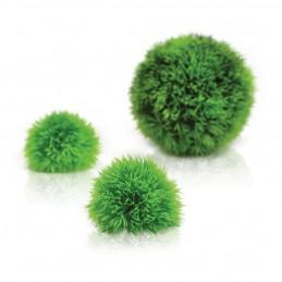 Oase Biorb Set boules vertes OASE 822728002957 Plantes