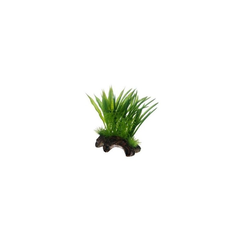Hobby Flora Root 1
