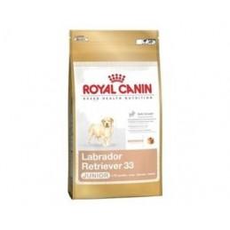 Royal Canin Labrador Retriever Junior 3 kg ROYAL CANIN 3182550725507 Croquettes Royal Canin