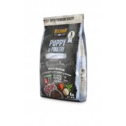 Croquettes Belcando Puppy Grain Free Poultry  BELCANDO 4002633556011 Croquettes Belcando