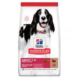 Croquettes Hill's Medium Adult Agneau Riz 12 kg