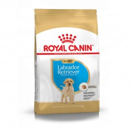 Royal Canin Labrador Retriever Junior 12 kg ROYAL CANIN 3182550725514 Croquettes Royal Canin