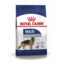 Royal Canin Maxi Adult 4 kg ROYAL CANIN 3182550402224 Croquettes Royal Canin