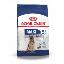 Royal Canin Maxi Adult 5+ 4kg ROYAL CANIN 3182550402293 Croquettes Royal Canin