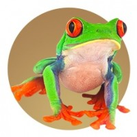 Materiel Terrariophilie : Accessoire Reptile sur Animaux-Market