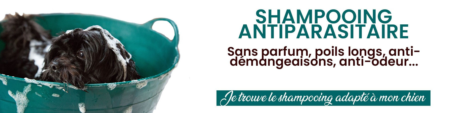 shampooing anti parasitaire pour les chiens de la marque ActiPlant