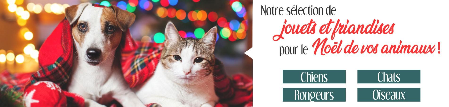 Sélection de jouets et friandises pour Noel !