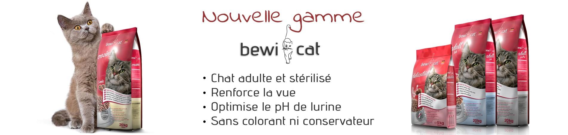 Nouvelle gamme de croquettes pour chat : Bewi Cat